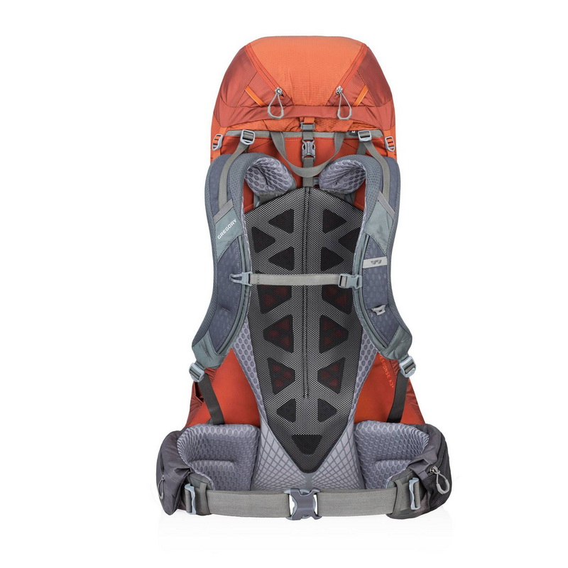 Gregory Baltoro 75L backpack frame view