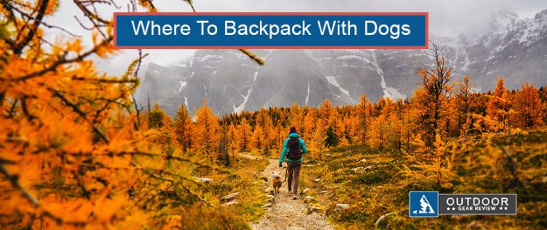 where to backpack with dogs in california